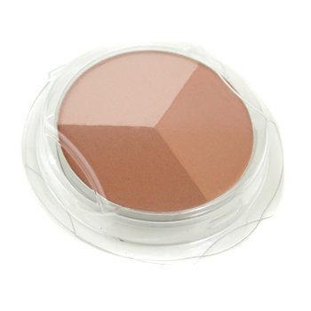 Shiseido-The Makeup Luminizing Color Powder Refill - L4 Golden Bronze