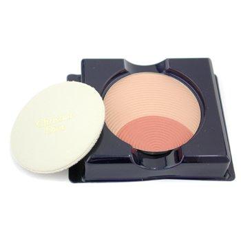 Christian Dior-Poudrier Diorific Powder & Blush Duo Refill - No. 876 Duo Amber