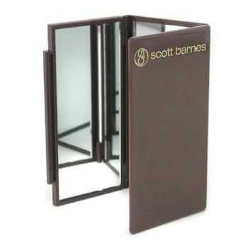 Scott Barnes-Flipout Mirror