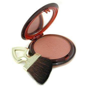 Guerlain-Terracotta Blush & Sun Sheer Bronzing Blush - # 02 Sun Kissed