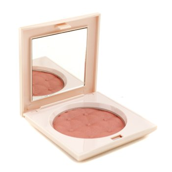 Pupa Baroque Blush - #01 Pink Delight  9g/0.32oz