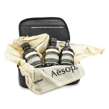 AesopCentre Of Gravity Set: Parsely Seed Facial Cleanser 100ml + Toner 100ml + Serum 100ml + Bag 3pcs+1bag