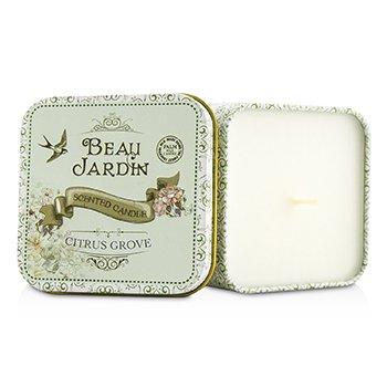 Scented Candle - Beau Jardin Citrus Grove Heathcote & Ivory Scented Candle - Beau Jardin Citrus Grove 100g/3.53oz