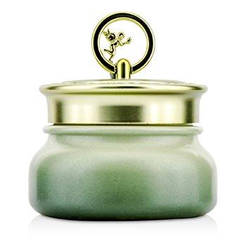 SkinFood Agave Cactus Cream – Light 45g/1.58oz