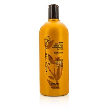 Bain De Terre Keratin Phyto-Protein Sulfate-Free Strengthening Shampoo (Weak  Fragile Hair) 1000ml/33.8oz