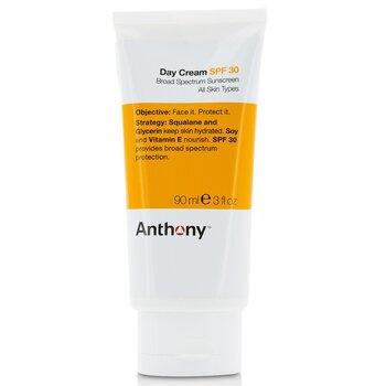 Купить Logistics For Men Дневной Крем SPF 30 90ml/3oz, Anthony