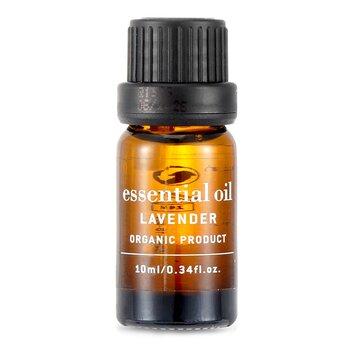 Essential Oil - Lavender (10ml/0.34oz)