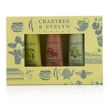 Botanicals Hand Therapy Set (1x Citron, Honey & Coriander, 1x Pomegranate, Argan & Grapeseed, 1x Avocado, Olive & Basil) (3x25g/0.9oz)