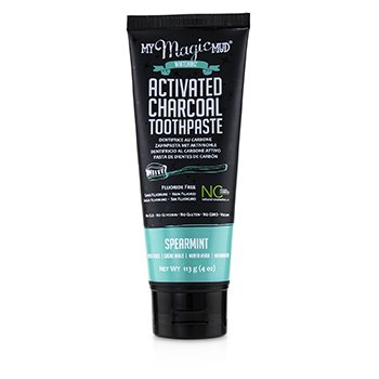 Activated Charcoal Toothpaste (Fluoride-Free) - Spearmint (113g/4oz)