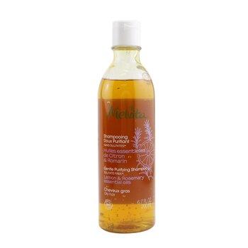 Gentle Purifying Shampoo (Oily Hair) (200ml/6.7oz)